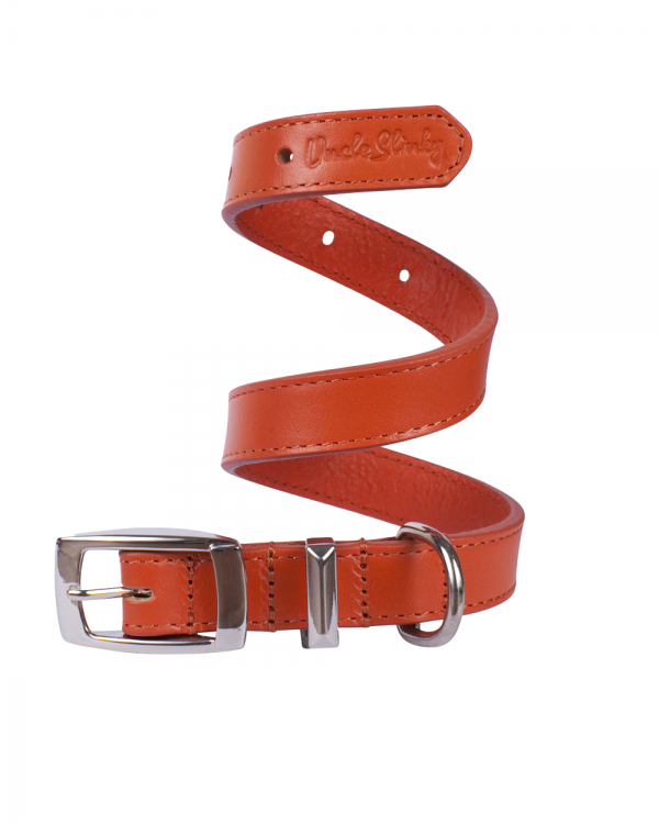 dog collar orange